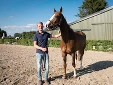 Elster ruiter én ondernemer gelooft in wonderpaard