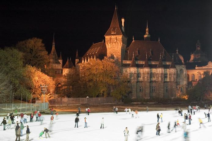 Patinage sur glace aux abords du château.