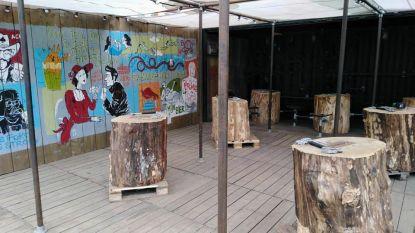 Brouwerij Haacht looft 10 bakken Primus voor beste 'Nageltje Klop-speler'