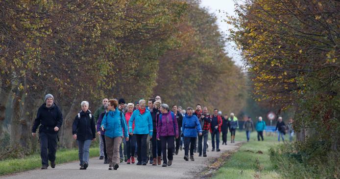 Kuier deur is een een wandelprogramma van zestien weken speciaal voor mensen die in beweging willen komen.