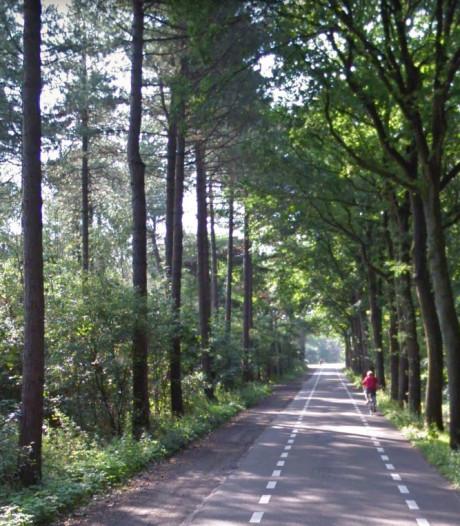 Verbreding Bergsebaan gaat niet door, gemeente Oosterhout kiest voor drempels en fietsstroken