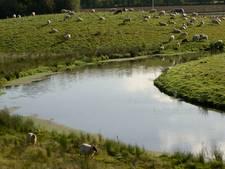 Gemeente Wierden waarschuwt voor gevaarlijk zwemwater