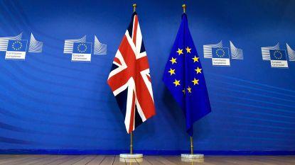 Britse parlementaire commissie waarschuwt voor vertraging van Brexit
