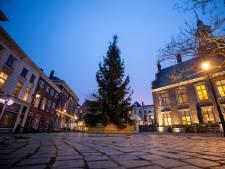 Schiedamse Havenkerk krijgt 8 meter hoge kerstboom