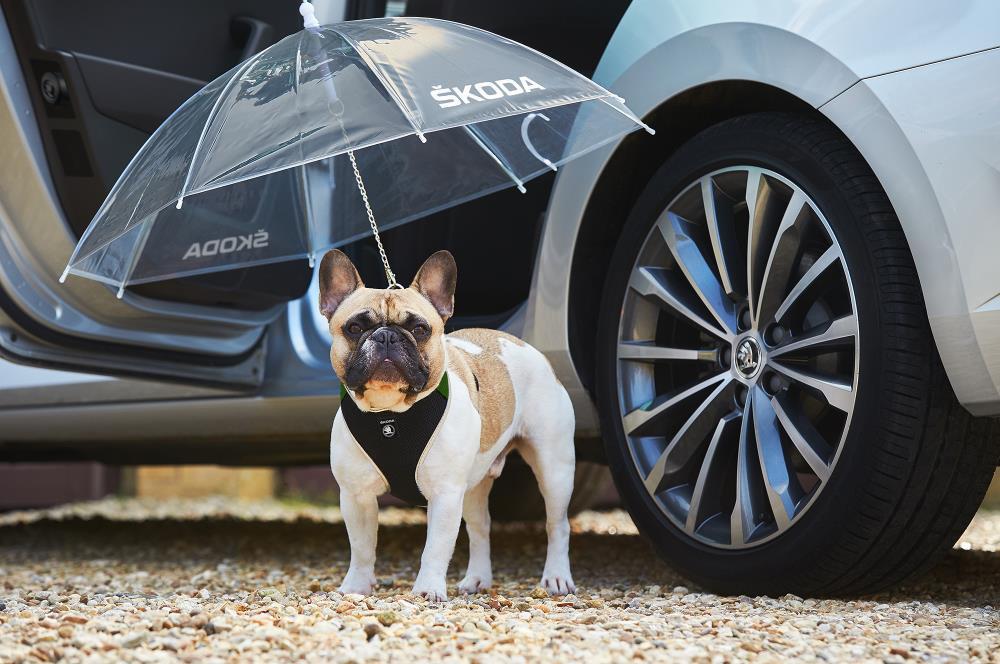 Skoda levert een speciale 'puppyparaplu'