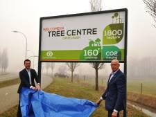 Laanboomkwekers gaan voor de toppositie van Europa