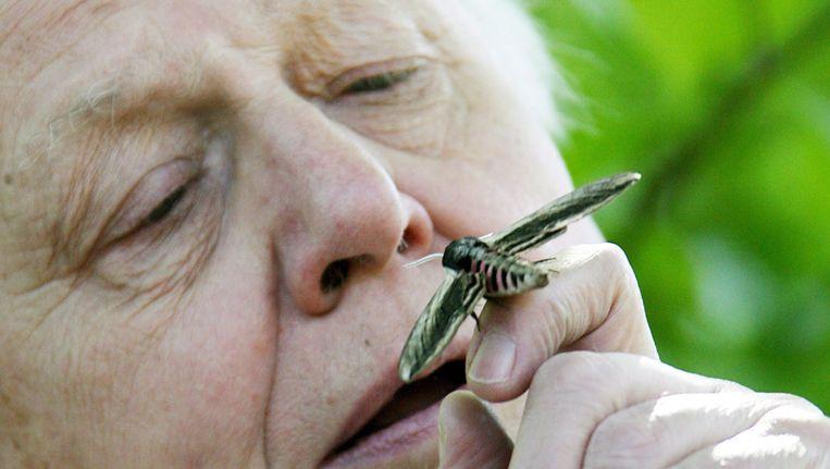 David Attenborough Beeld ANP