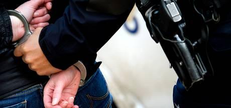Politie houdt inbrekers aan in de regio