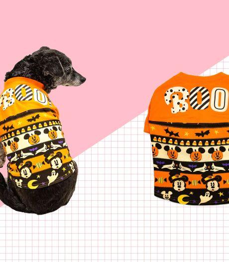 Disney sort ses tenues d'Halloween assorties pour vous, vos enfants et votre chien
