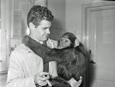 Wie knuffelde er met deze aap bij dierentuin Animali in Eindhoven?