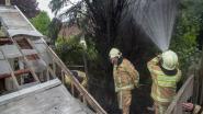 Oproep voor Schoorstraat misbegrepen: brandweer snelt naar Schoolstraat vijf kilometer verderop