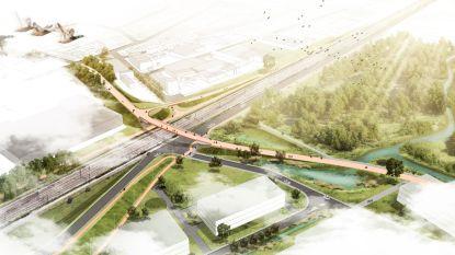 Fietsen tussen het groen : zo zal nieuwe Krugerbrug eruitzien