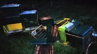 """Vandalen van bijenkasten in Arboretumbos blijken minderjarigen: """"Intussen excuses gekregen en schade vergoed"""""""