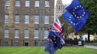 Britse studenten willen referendum over brexitdeal en bereiden grootschalige protesten voor