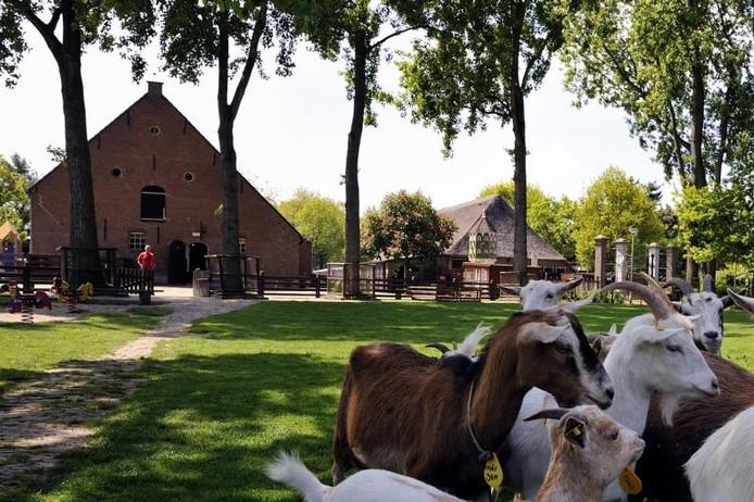 Kinderboerderij Minnebeek. foto Peter van Trijen/het fotoburo