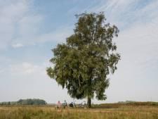Twente heeft met 'fluisterstil' Haaksbergerveen bijna het stilste plekje van Nederland