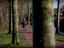 Bunschoten zaagt 43 gevaarlijke bomen om