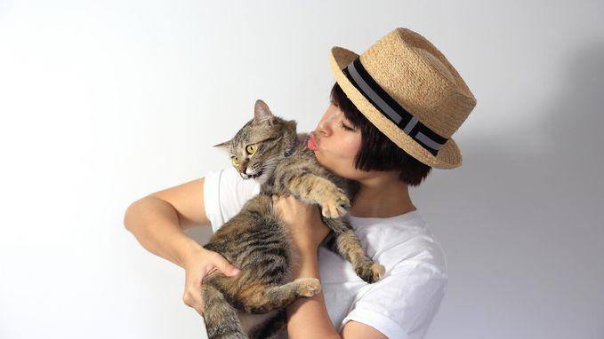 Internationale kattendag: welke kat past het best bij jou?