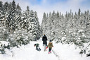 Sneeuw in Bertrix.