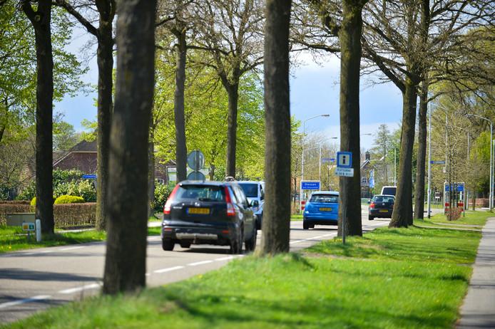De Beerseweg ter hoogte van de Turkaaweg in Diessen. Langs dit deel van de N395 verdwijnen 120 bomen. Een groot deel daarvan wordt herplant op grotere afstand van de rijbaan.