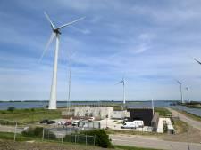 Windmolen op land mept gemiddeld 20 vogels per jaar dood