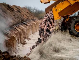 Tienduizenden karkassen van nertsen in Deense massagraven stijgen weer naar oppervlakte, buren ongerust over vervuiling