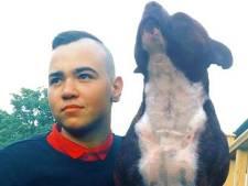 Trouwe jonge bulldog sterft kwartier nadat baasje (25) overlijdt aan hersenkanker
