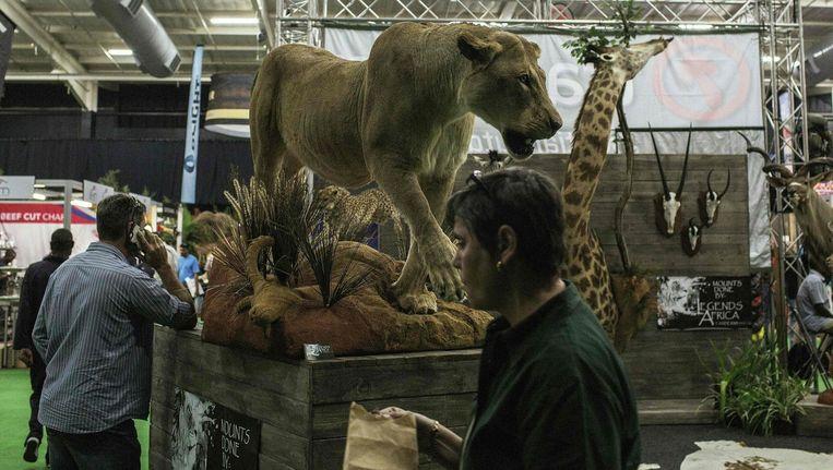Bezoekers van de HuntEx2016 hunting expo in Midrand, Zuid-Afrika, lopen langs opgezet wild. Beeld afp