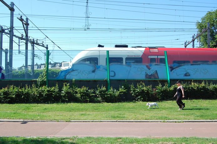 Transparante geluidsschermen aan het spoor in Dordrecht. Zulke gaan er waarschijnlijk ook komen in Zevenbergen. Het is alleen de vraag wanneer.