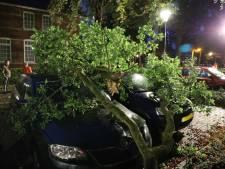 Stormschade in Loon op Zand, grote tak landt op auto's door herfstwind