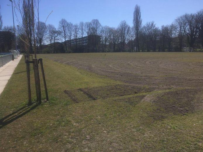 Op Sportpark Middenmeer was de terreinbeheerder uit zichzelf al begonnen de grasvelden te verwijderen, zoals van WVHEDW, hetgeen de club zeer waardeert.
