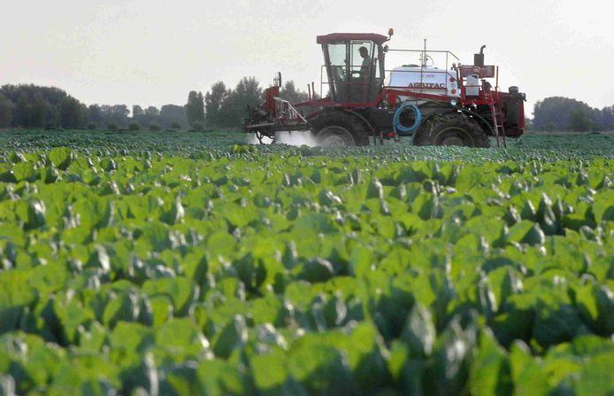 Een boer spuit bestrijdingsmiddel over zijn gewas.