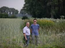 Vogelvereniging Reusel-De Mierden helpt de patrijs een handje