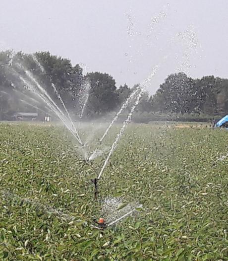Boomkwekers Zundert helpen grondwater op peil te brengen