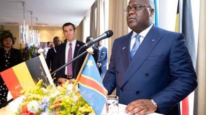 Goed nieuws voor Antwerpse diamant: groot lot Congolese stenen wordt hier geveild