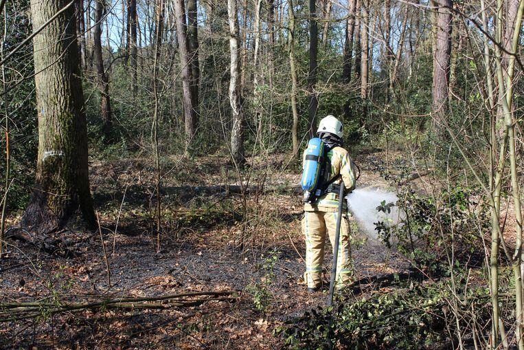De brandweer moest deze zomer van ene bosbrand naar de andere
