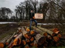 'Bomenknuffelaar' is kappen van (gezonde) bomen in Deventer beu: 'Kan en moet echt anders'