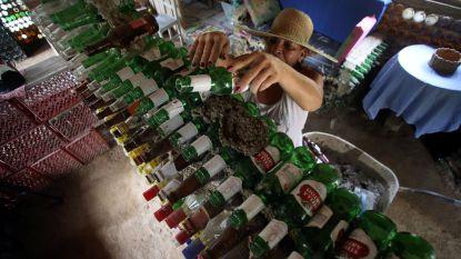 Ongeziene recyclage: huis van 6.000 afgedankte flesjes
