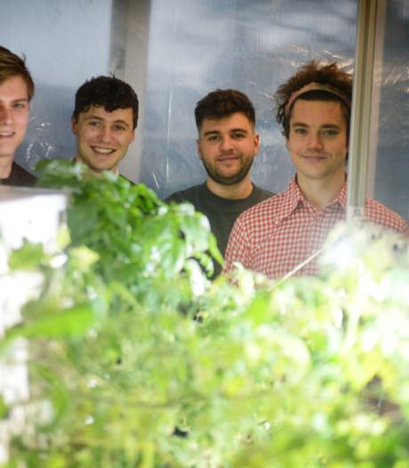UT-studenten werken aan nieuwe technologie: 'We hebben al sperziebonen gekweekt'
