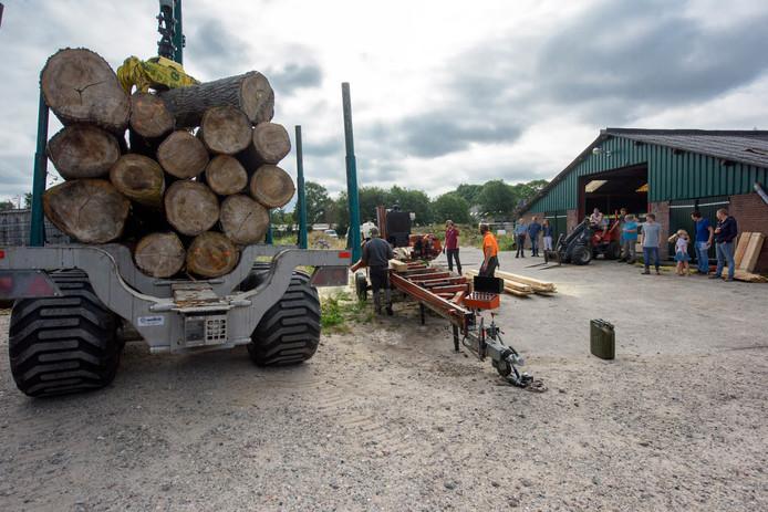 De Brabantse Populieren Vereniging hield vrijdag een proefzaagdag. Het doel: het onderschatte hout in de regio houden.