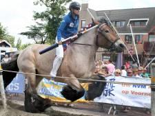 Jubileum voor trekpaarden