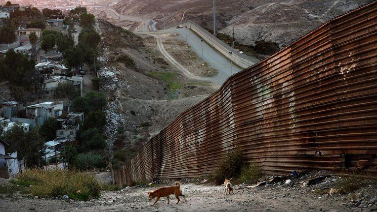 In de Mexicaanse grensplaats Tijuana staat al een stalen muur die migranten die naar de VS willen, moet tegenhouden. Trump wil dat de muur zo'n 1.000 kilometer lang wordt. Beeld Marcel van den Bergh / de Volkskrant