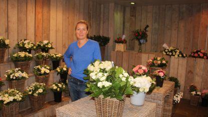 """Bloemenrijk sluit de deuren na 100 jaar: """"Sommige klanten hebben geweend"""""""