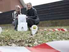 Vlaggetjes markeren drollen in Almelo: toolbox tegen overlast hondenpoep