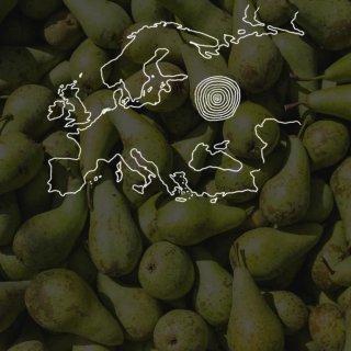 Hoe verboden Nederlandse peren toch in Rusland belanden