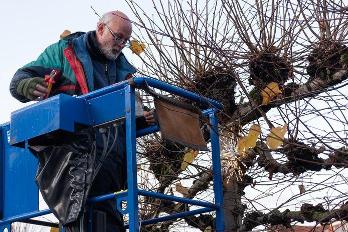 Medewerker Rienk is met zijn gereedschap aan het werk. Als eerste is sfeerverlichting geïntstalleerd in de leibomen langs de Kleine en Grote spui.