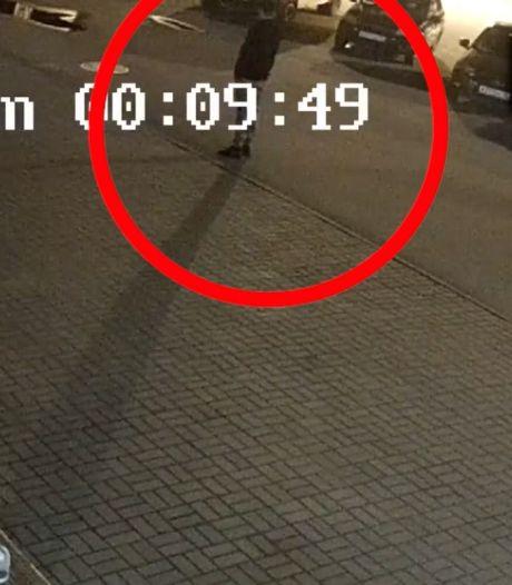 Un ours attaque un homme dans un parking