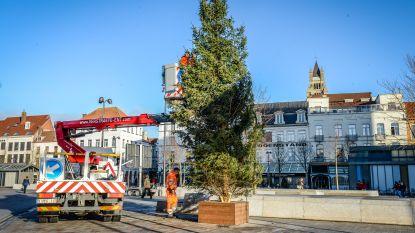 Beter laat dan nooit: drie kerstbomen op 't Zand