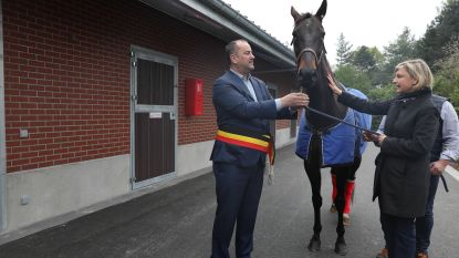 """VIDEO. Minister Crevits zet paard op stal tijdens opening 84 nieuwe stallingen: """"Ik wil er gerust op zitten hoor"""""""