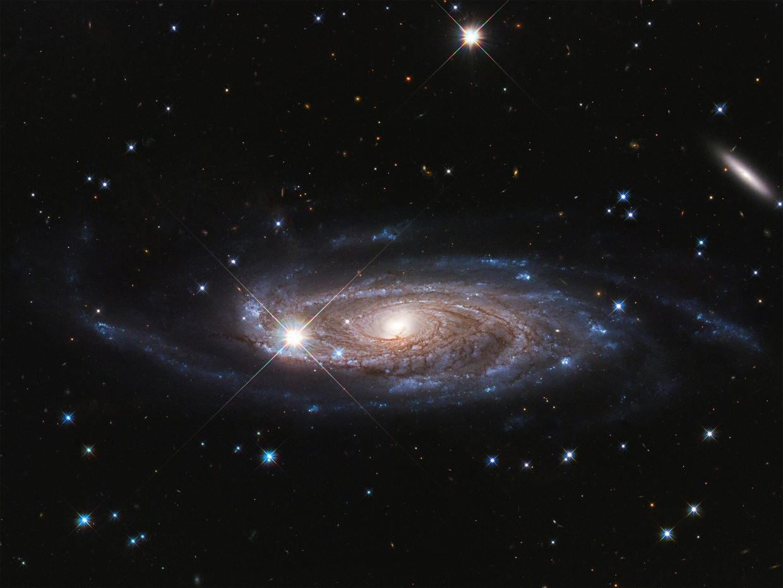 Een van de grootste sterrenstelsels die we kennen, in beeld gebracht door ruimtetelescoop Hubble. Beeld null